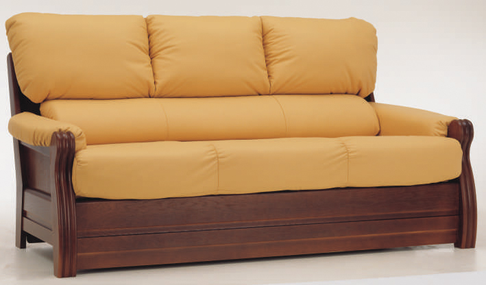 Wooden Sofa with Cushions